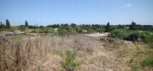 Moshav Agricole (Nord Raanana) – 20.000 m²
